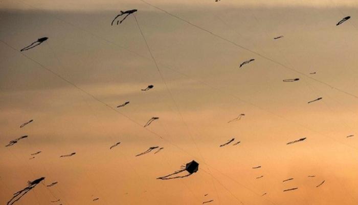 135-105847-corona-kites-sky-cairo_700x400