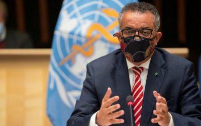 Coronavirus: WHO head calls herd immunity approach 'immoral'