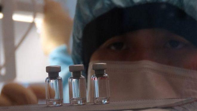فيروس كورونا: مناعة خفية توفرها خلايا – تي للحماية من الإصابة بكوفيد-19